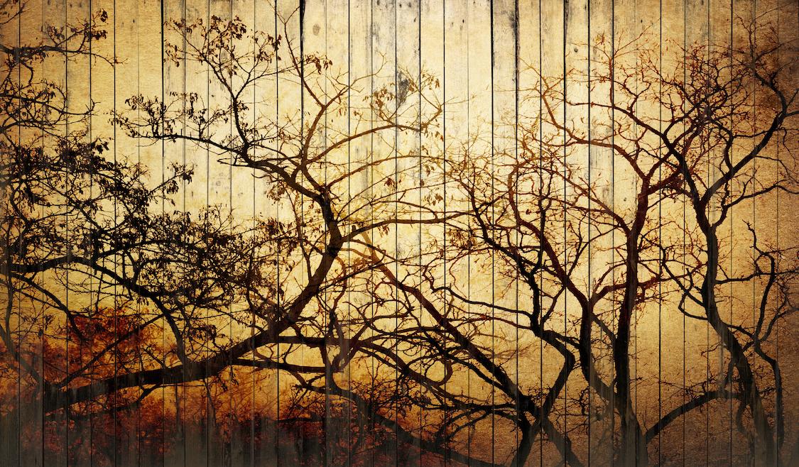 Art sur une planche de bois tapisserie
