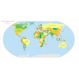 Carte Du Monde En Langue Maternelle