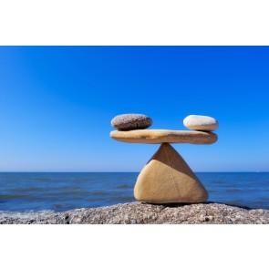 L'équilibre De La Vie