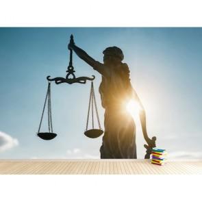 Cabinet d'avocats papiers peints photo 3D appliqué sur le mur