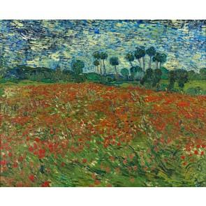 Van Gogh - Champ De Pavot