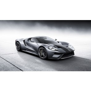Ford Gt Argent