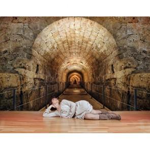 Pont tunnel profond papiers peints photo appliqué sur le mur