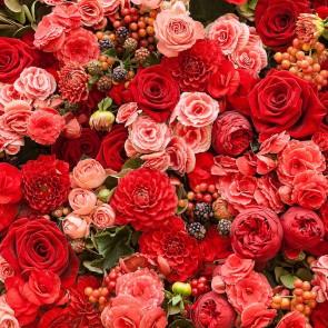 L'harmonie Des Roses