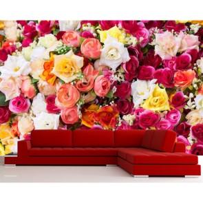 Roses dans toutes les couleurs papier peint appliqué sur le mur