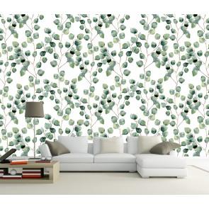 Feuilles D'Eucalyptus Papier Peint Photo Applique