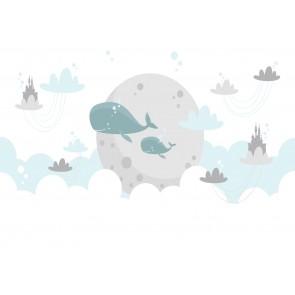 Terre Des Baleines