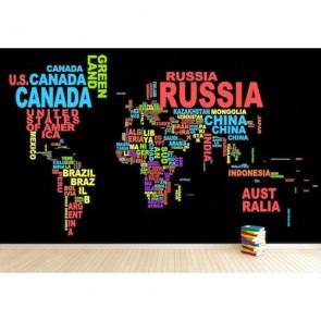 Carte du monde de typographie colorée papier peint appliqué sur le mur