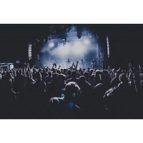 Zone De Concert
