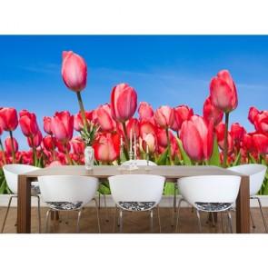 Tulipes roses tapisserie murale