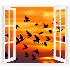 Oiseaux Dans La Fenêtre