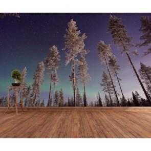 Les arbres touchent le ciel papier peint appliqué sur le mur