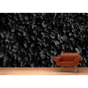 Feuilles noires papier peint appliqué sur le mur