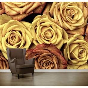 Roses jaunes papiers peints photo appliqué sur le mur