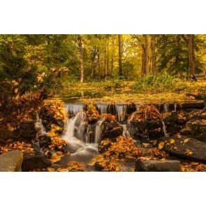 Cascade Avec Vue Sur L'automne
