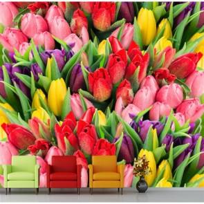 La beauté des tulipes decoration murale appliqué sur le mur