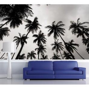 Palmiers en noir et blanc papier peint appliqué sur le mur