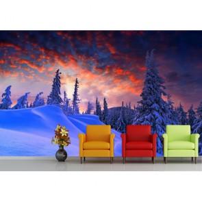 Hiver et Noël tapisserie murale appliqué sur le mur