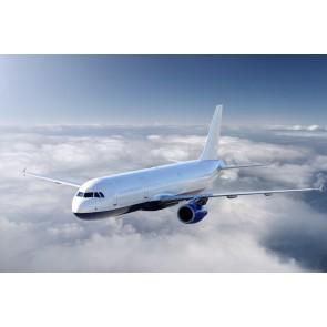 Modèle D'avion Boeing