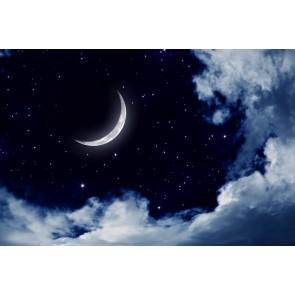 Vraies Nuits
