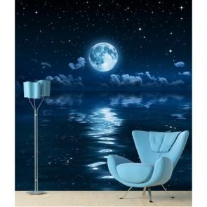 Contre le clair de lune papiers peints photo appliqué sur le mur