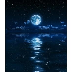 Contre Le Clair De Lune