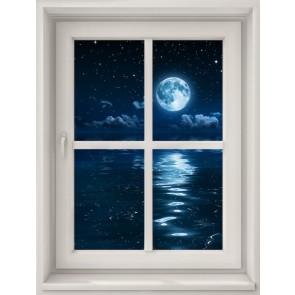 Clair De Lune Depuis Ma Fenêtre