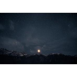 Profite De La Nuit