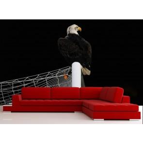 Atterrissage de l'aigle tapisserie
