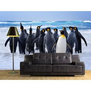 Pingouins papiers peints photo 3D appliqué sur le mur
