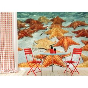 Étoile de mer tapisserie appliqué sur le mur