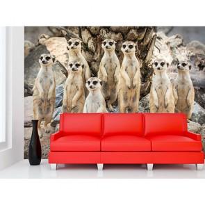 Looks curieux tapisserie murale appliqué sur le mur