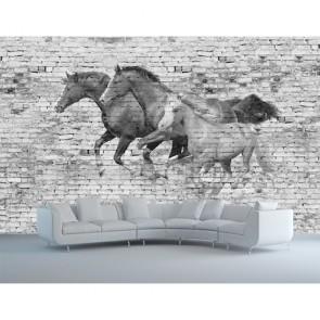 Mur avec des chevaux papier peint 3d appliqué sur le mur