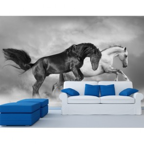 Élever des chevaux papier peint 3d appliqué sur le mur