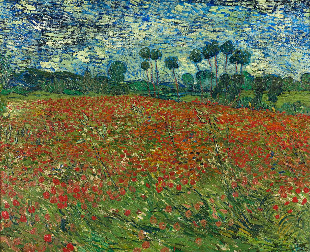 Van Gogh - Champ de pavot decoration murale