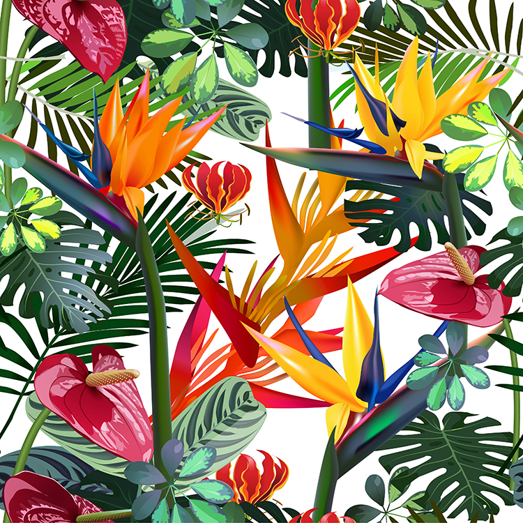 Motif floral tropical papiers peints photo 3D