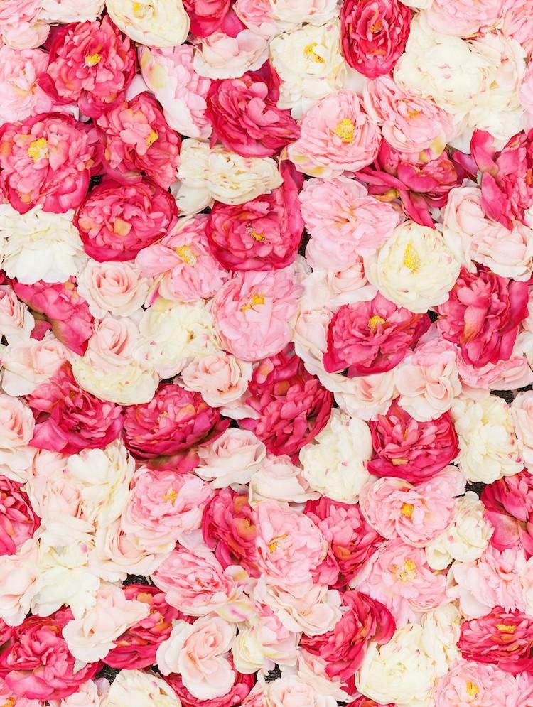 Roses romantiques tapisserie