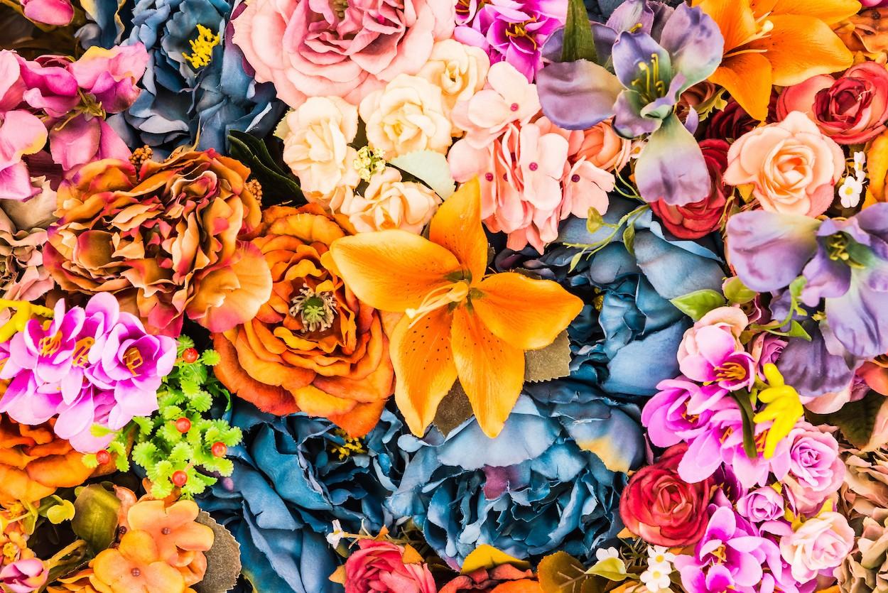 Fleurs éclatantes papiers peints photo