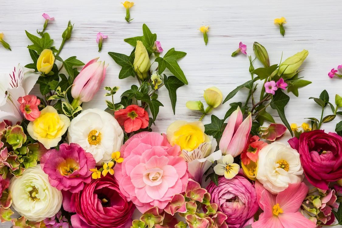 Exposition de fleurs tapisserie