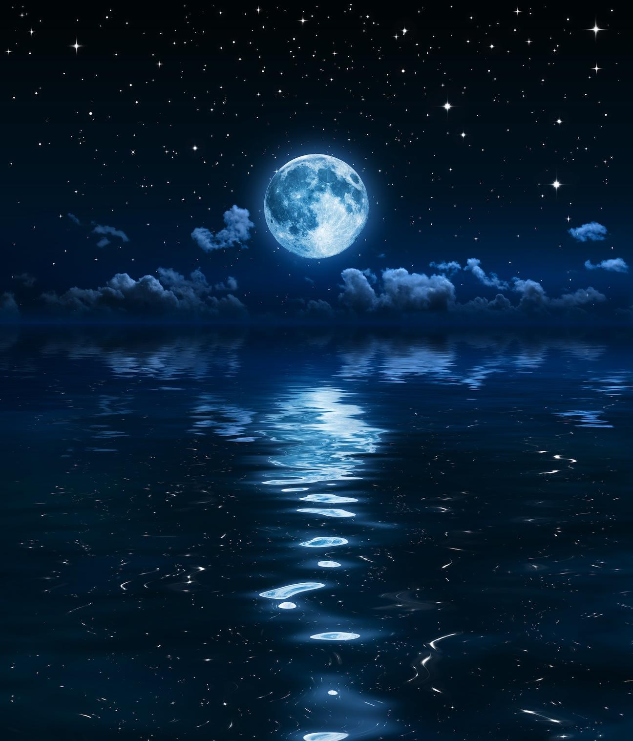 Contre le clair de lune papiers peints photo