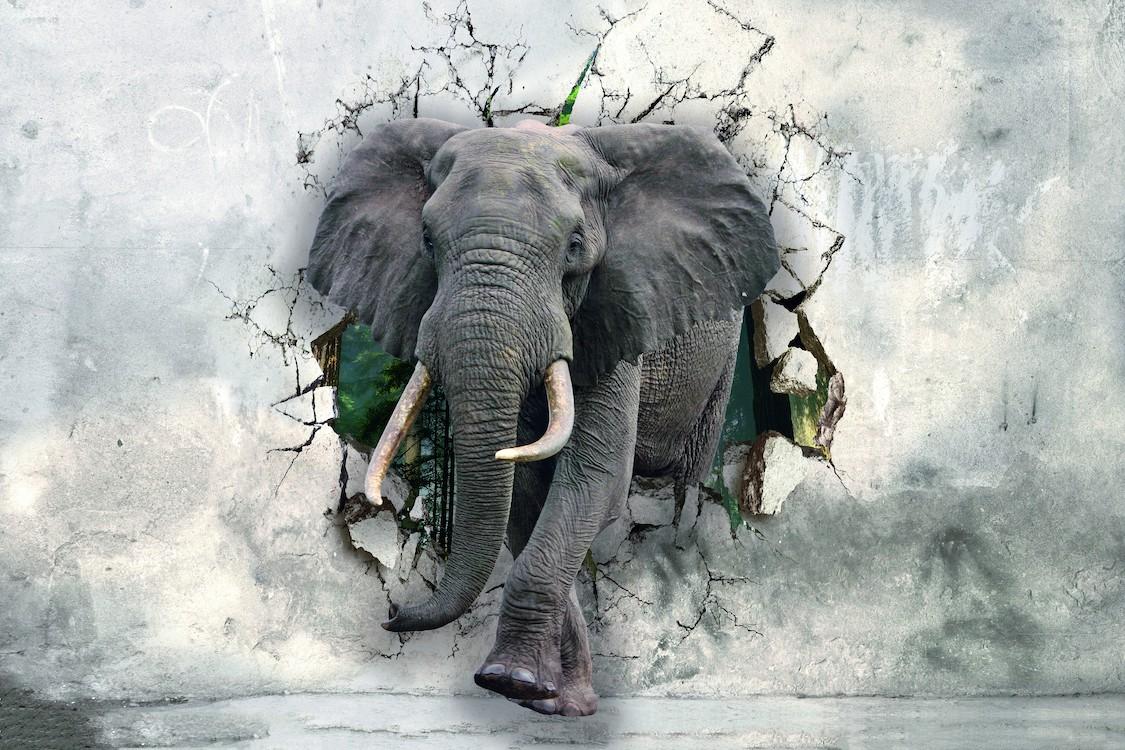 Éléphants forts tapisserie murale